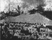 8vo. Campestre, Ceiba 1915